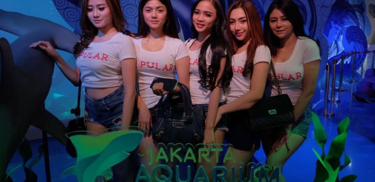 "Finalis Miss POPULAR Batch 3 ""Social Media Celebrity"" mengunjungi Jakarta Aquarium. Foto :popular"